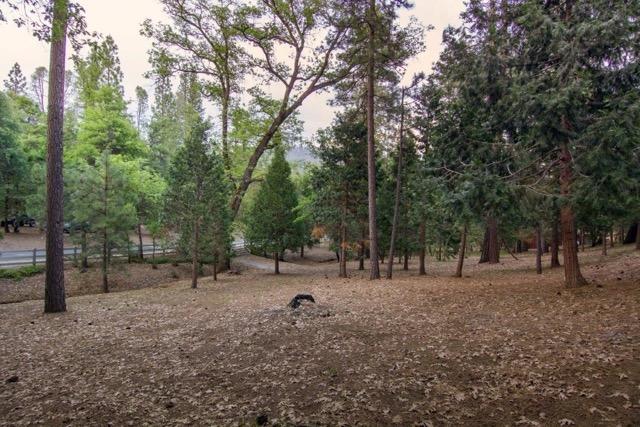 GK Landscape